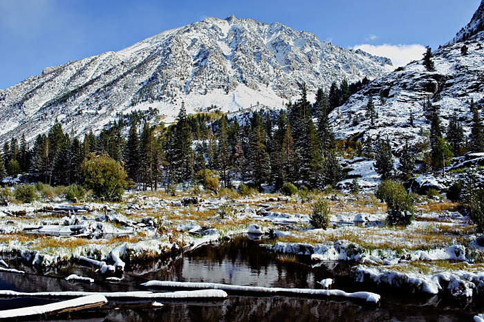 Lundy Canyon, Eastern Sierra