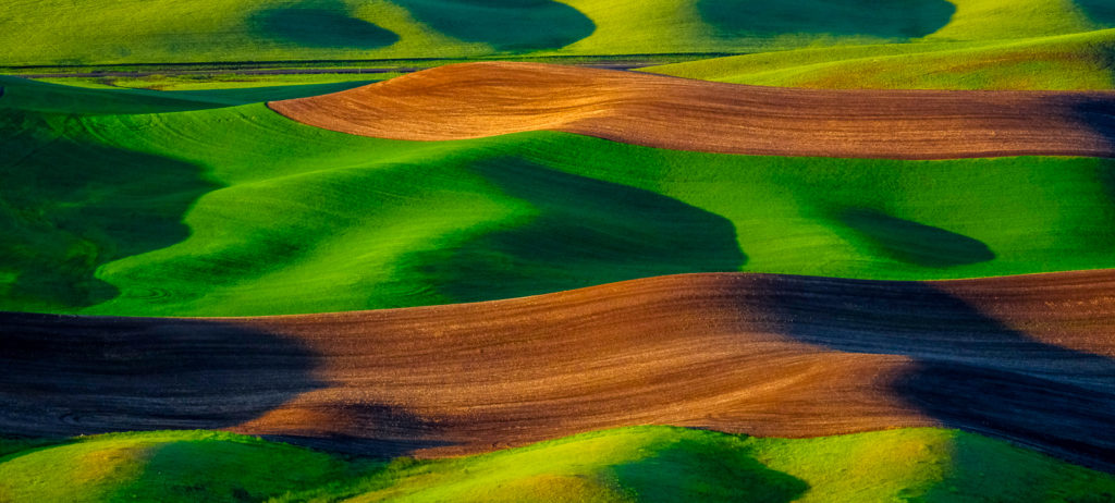 palouse photo workshop